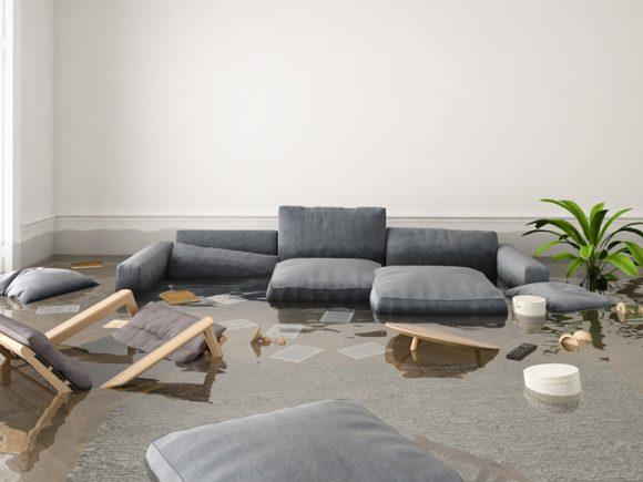 Flood Damage Restoration in Joliet, Chicago, Homewood, IL, Munster, IN