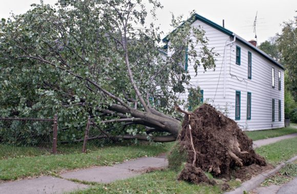 Wind Damage Repair in Munster, IN